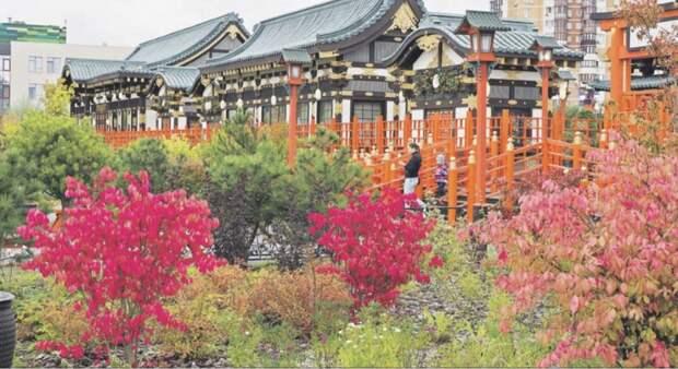 Парк в Куркине для фестиваля «Цветочный джем» создан по японским канонам