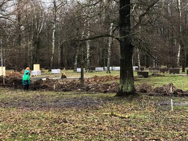 Фотокадр: начало благоустройства в лесопарке «Северный»