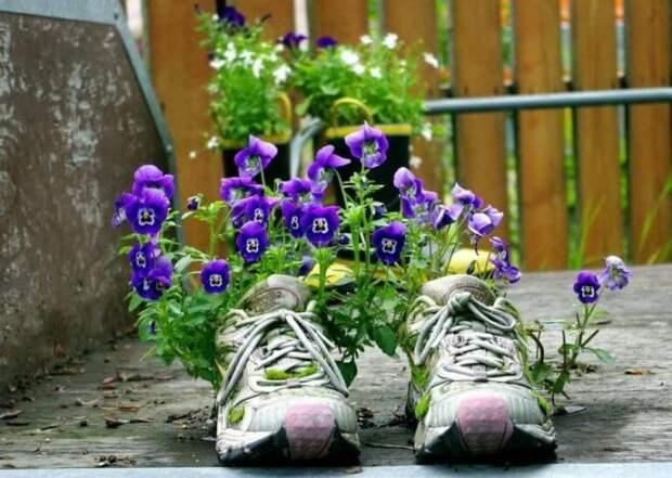 Цветы в старой обуви — отличная идея для тех, кто любит экономить.
