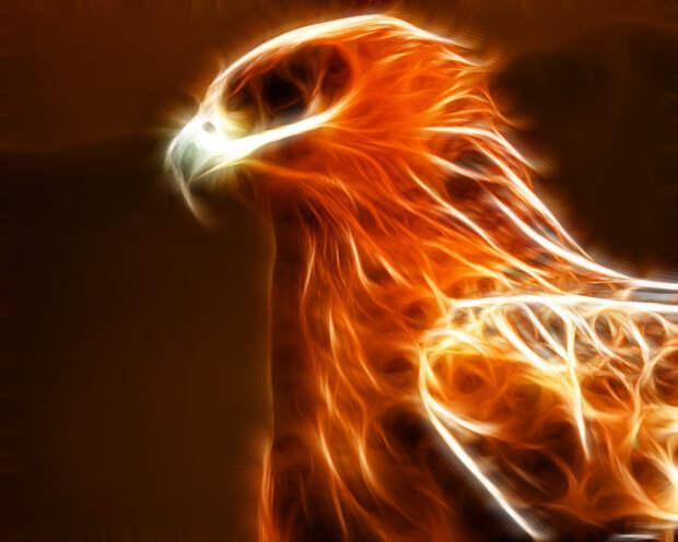 Легенды и мифы о птице Феникс