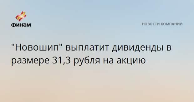 """""""Новошип"""" выплатит дивиденды в размере 31,3 рубля на акцию"""