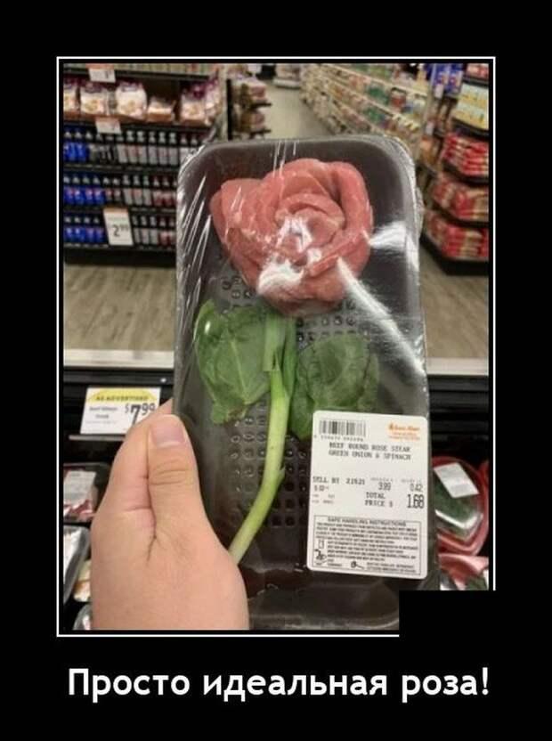 Демотиватор про розу