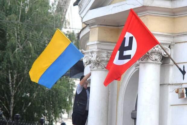 До становления западных парламентских традиций Украине и украинскому обществу ещё идти не менее двухсот...