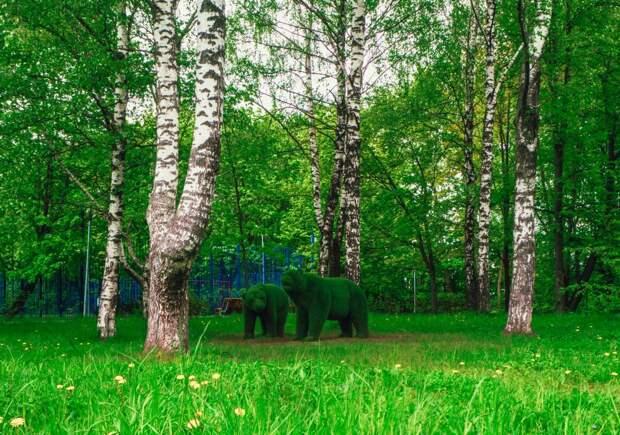 Фото дня: «мир животных» в районном парке
