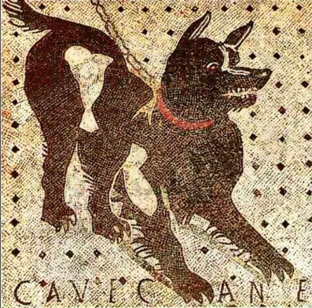 """Мозаика """"Осторожно, злая собака"""" в Помпеях"""