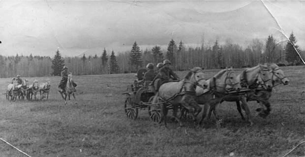 Пулеметные тачанки 2-го гвардейского кавалерийского корпуса на марше под Брянском СССР, война, история
