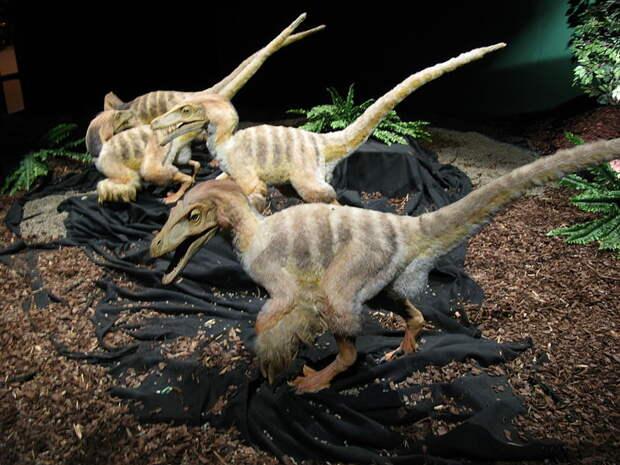 Если бы динозавры не вымерли 25