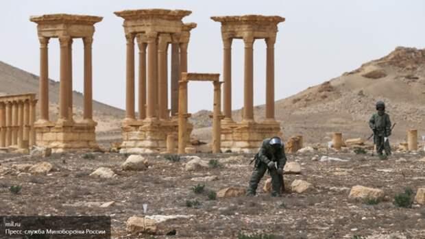 Новости Сирии: снова «режим тишины», боевики дрогнули, Обама зовет беженцев