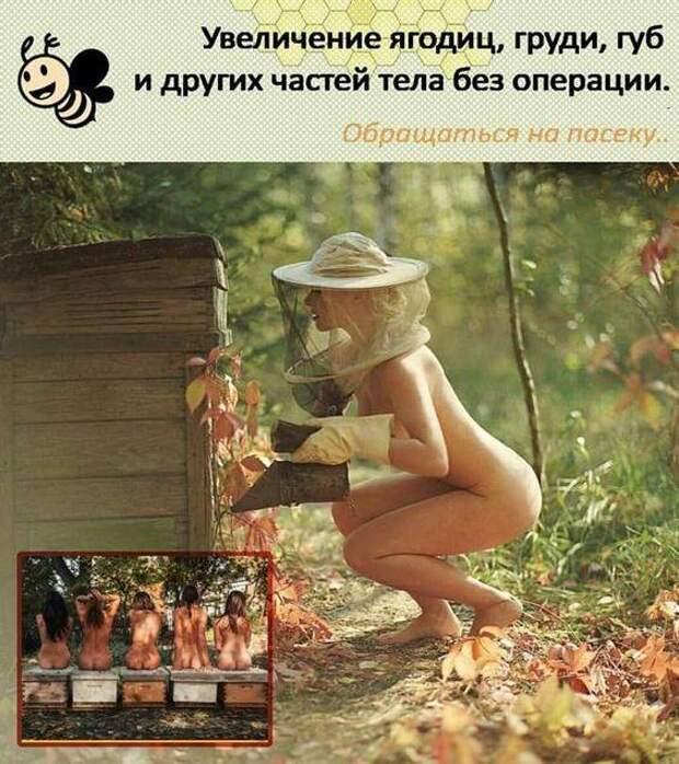 Две блондинки стоят на разных сторонах реки… Одна другой орет...
