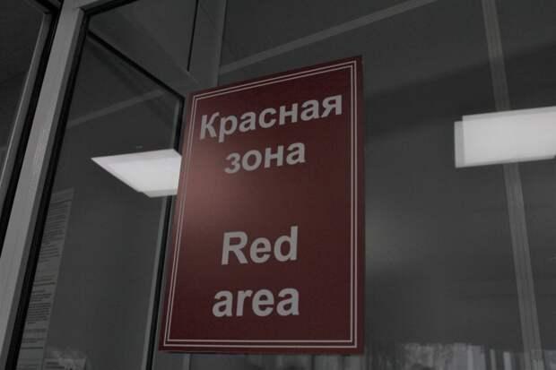 Новый антирекорд: 294 человека заболели COVID-19 за сутки в Новосибирской области