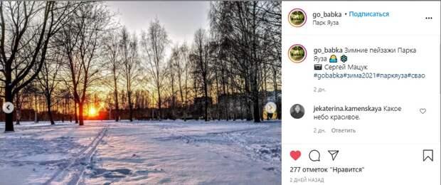 Фото дня: зимний пейзаж в парке «Яуза»