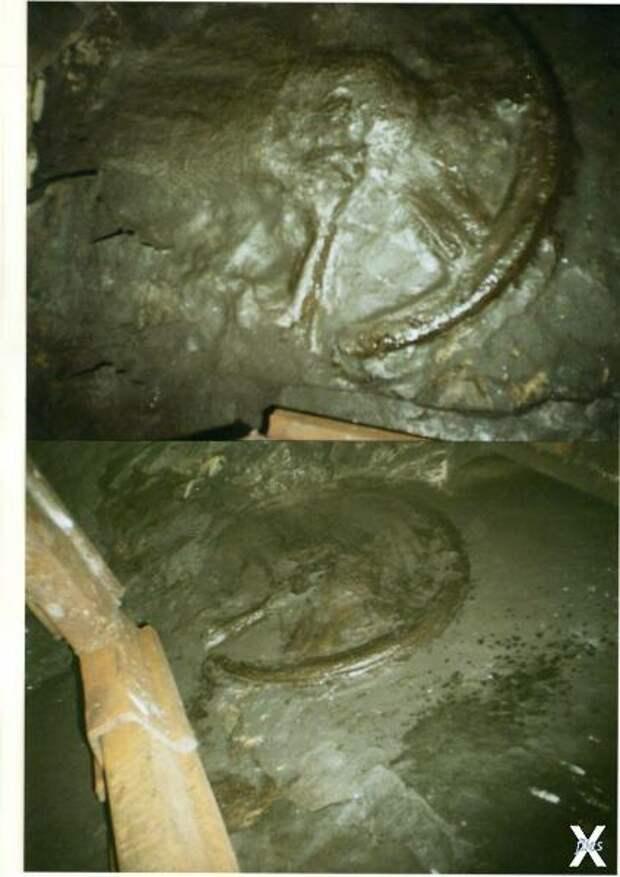 Уникальные находки древности, которые были обнаружены на территории России
