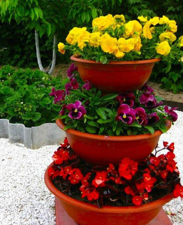 Многоярусный декоративный цветник.