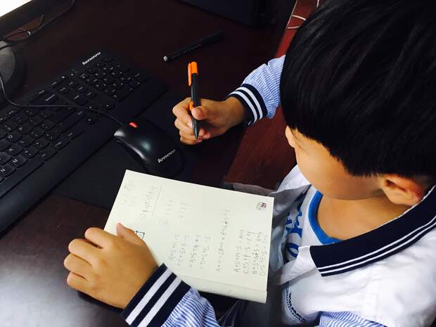 В Минпросвещения оценили вероятность перевода всех школ на дистанционное обучение