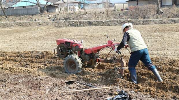 Робототехника может заменить работников сельского хозяйства в России к 2030 году
