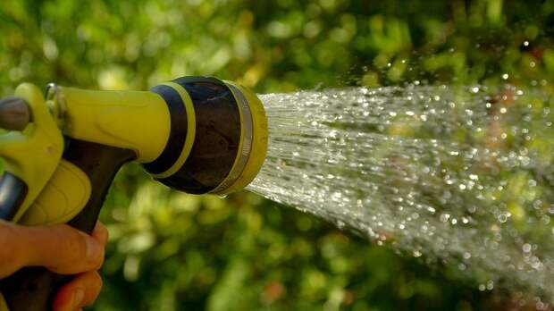 В Союзе садоводов предложили продлить «водную амнистию»