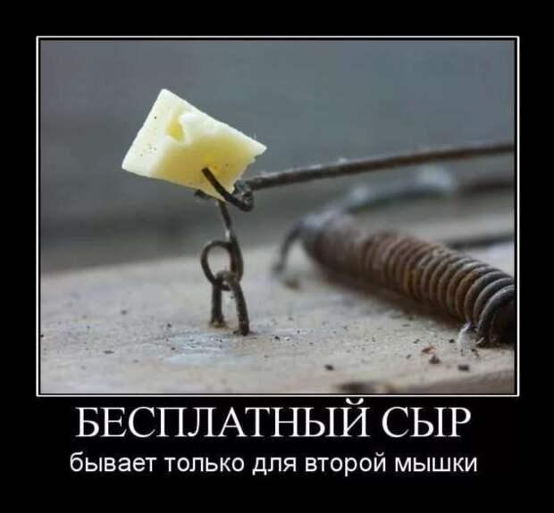Прикольные демотиваторы с надписями. Подборка chert-poberi-dem-chert-poberi-dem-45520724102020-1 картинка chert-poberi-dem-45520724102020-1