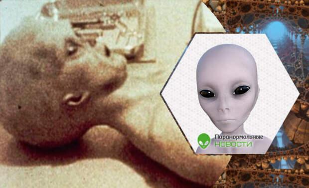 пришельцы, инопланетяне, теория заговора, Розуэлл, биороботы, НЛО, вскрытие пришельца