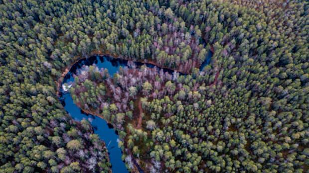 В Финляндии потребовали от России вернуть часть земель
