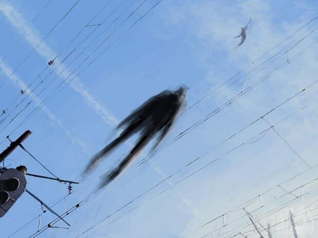 Человек умеет летать?