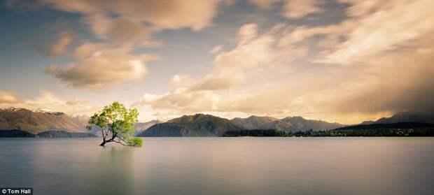 Ванака, Новая Зеландия.