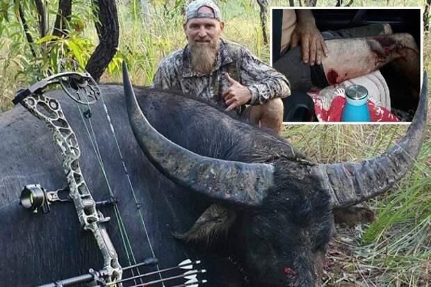 Месть жертвы: огромный умирающий буйвол нанес последний удар охотнику, оставив страшные раны