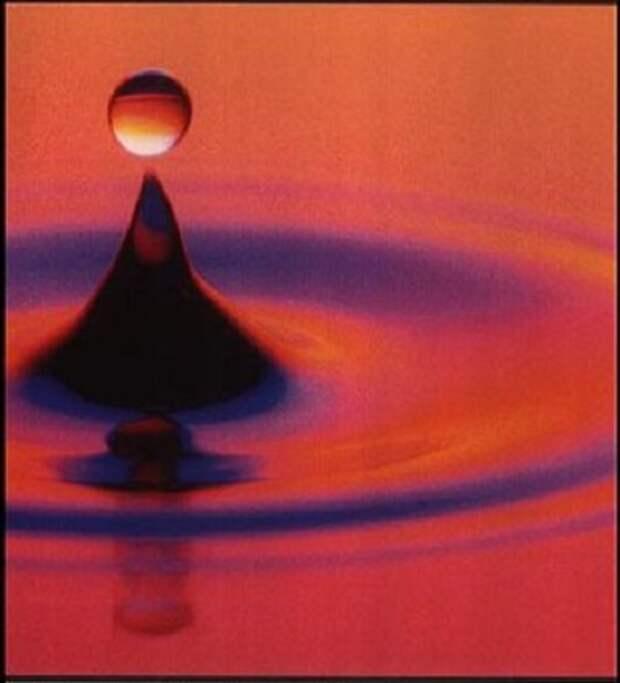Время как разум: Семь уроков по физике, ДНК без догмы и гидродинамика двоеточия