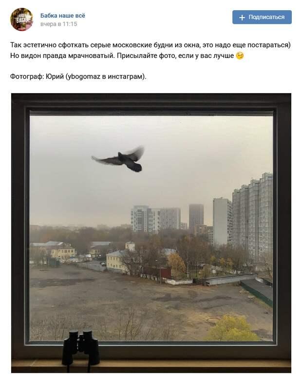 Фото дня: житель Бабушкинского оригинально запечатлел осенний пейзаж
