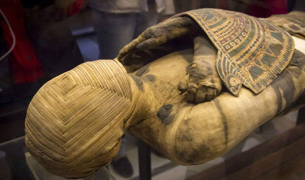 Ученые расшифровали геном египетских мумий: происхождение египтян удивило всех