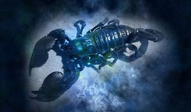 Астрологи: трем знакам зодиака нужно приготовиться ксюрпризу
