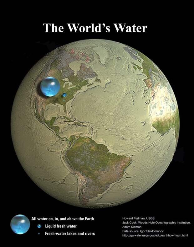 Планета Вода, насекомятина и упорные немецкие экологи