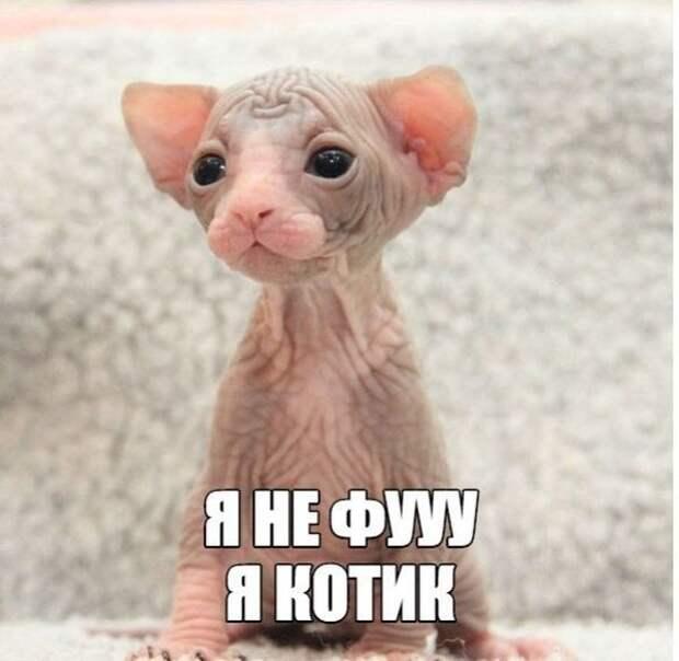 1470764829_10