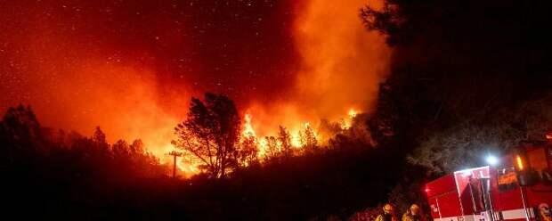 28 человек стали жертвами природных пожаров в США