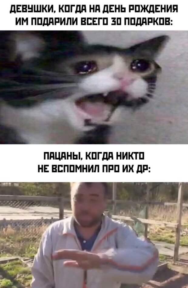 Самые смешные картинки и мемы за неделю