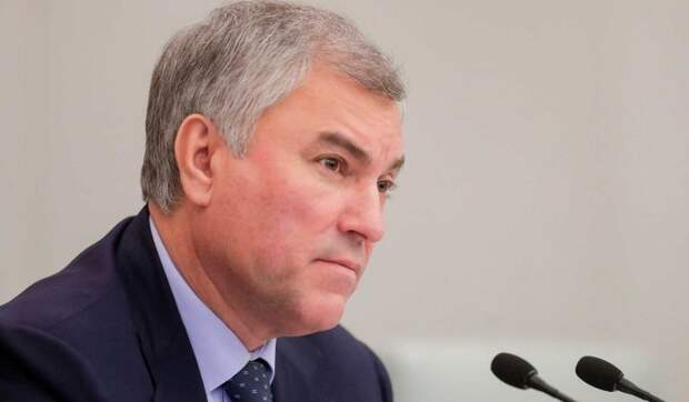 Володин поддержал предложение Золотова об ужесточении оборота оружия