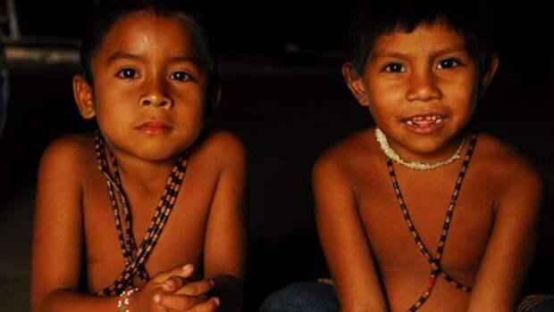 Племя матис из Бразилии. Боль и отрава
