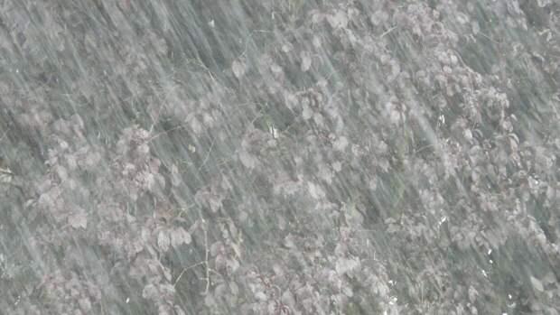 МЧС Петербурга объявило штормовое предупреждение из-за сильных дождей