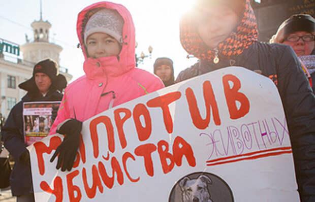 Путин поддерживает идею ужесточения наказания за живодерство
