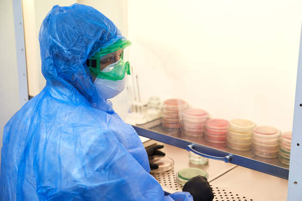 Американские учёные нашли два новых штамма коронавируса