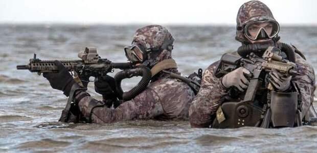 США всё ещё мечтают о Крыме: Американские «морские котики» тренируются в его захвате