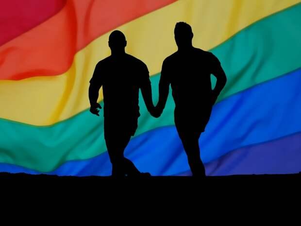 В Венгрии примут закон о запрете пропаганды гомосексуализма среди подростков