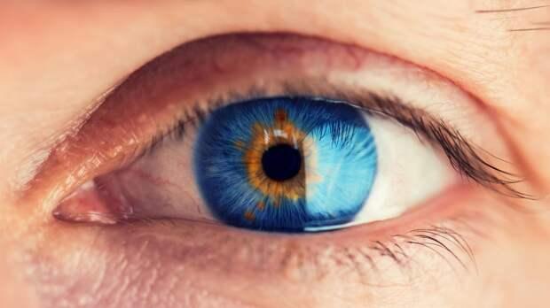 8 октября – Всемирный день сохранения зрения в этом году