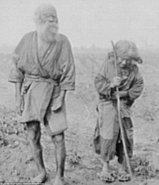 Пожилая пара на поле айны, история, народ, фотография
