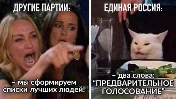 Единая Россия: предварительное голосование