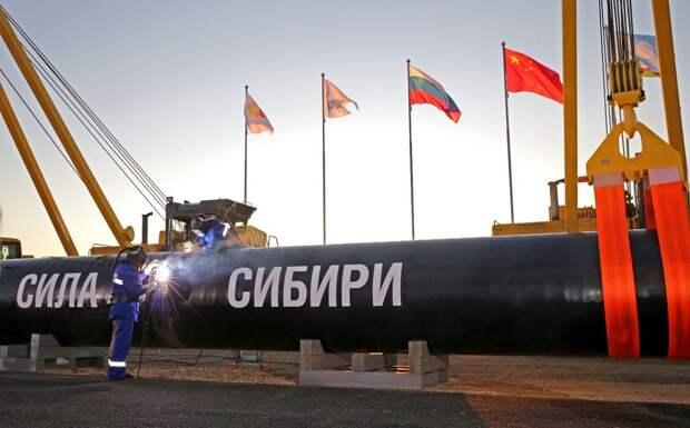 В войне «коллективной Греты Тунберг» с Китаем победит Россия