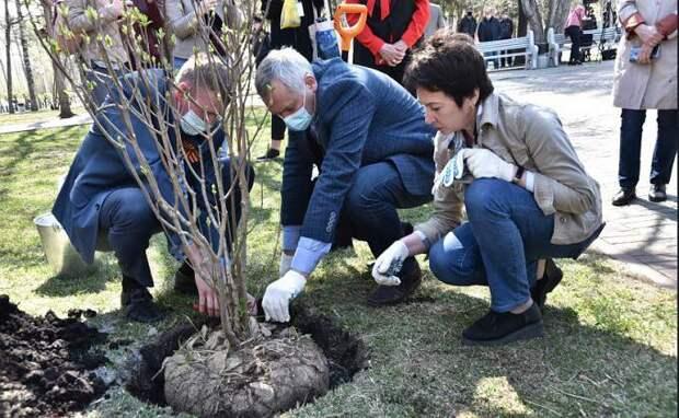 Андрей Травников вместе с новосибирцами принял участие в акции «Сад памяти»