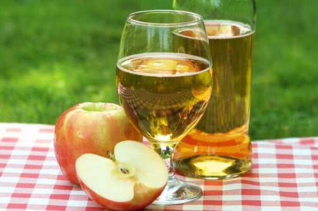 Домашний сидр из яблок не хуже, чем в Нормандии