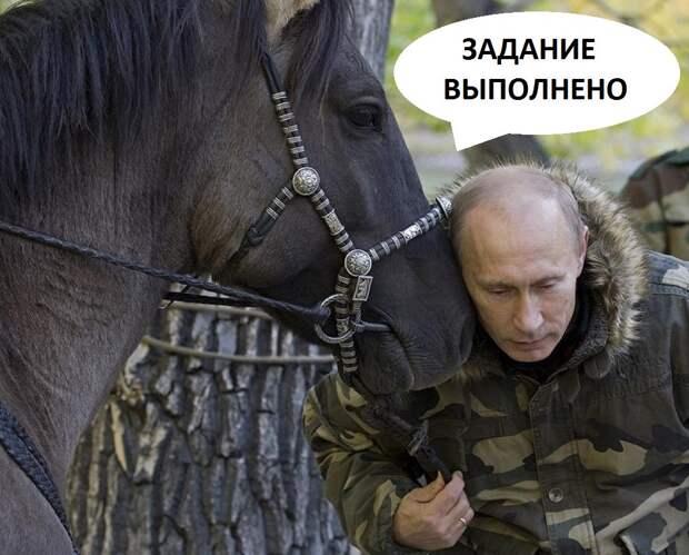 Чичваркин упал с лошади