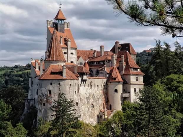 В замке Дракулы открылся пункт вакцинации