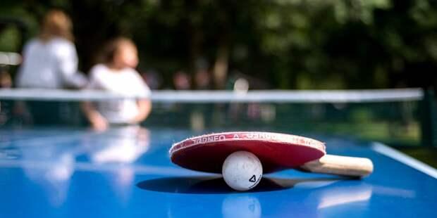 А вы будете играть в настольный теннис в Алёшкинском лесу? – новый опрос
